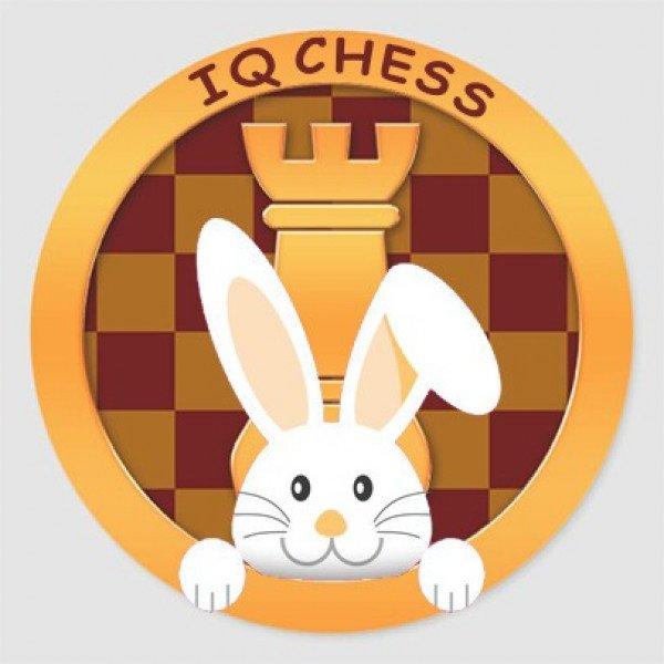 کلاس آنلاین مقدماتی شطرنج